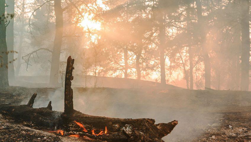 preventivna zaštita od požara