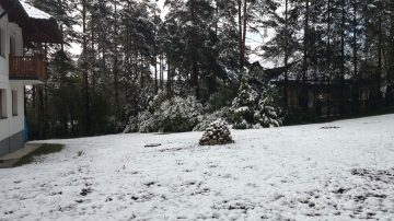 Zlatibor u maju sneg
